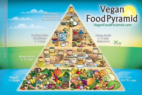 Vegan diet - vegan food pyramid