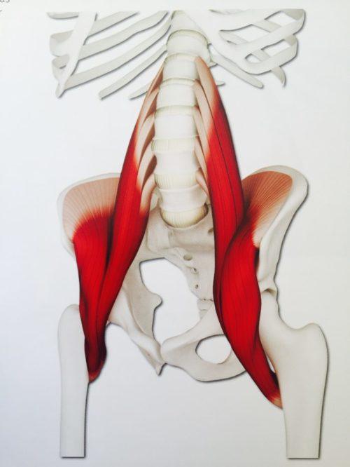 hip-flexors